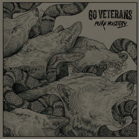 GO VETERANS – Pure Hostility – CD